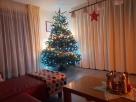 Blog 220 aneb Vánoční