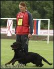 Total Rottweiler Magazine - CACIT Dobříš 2011